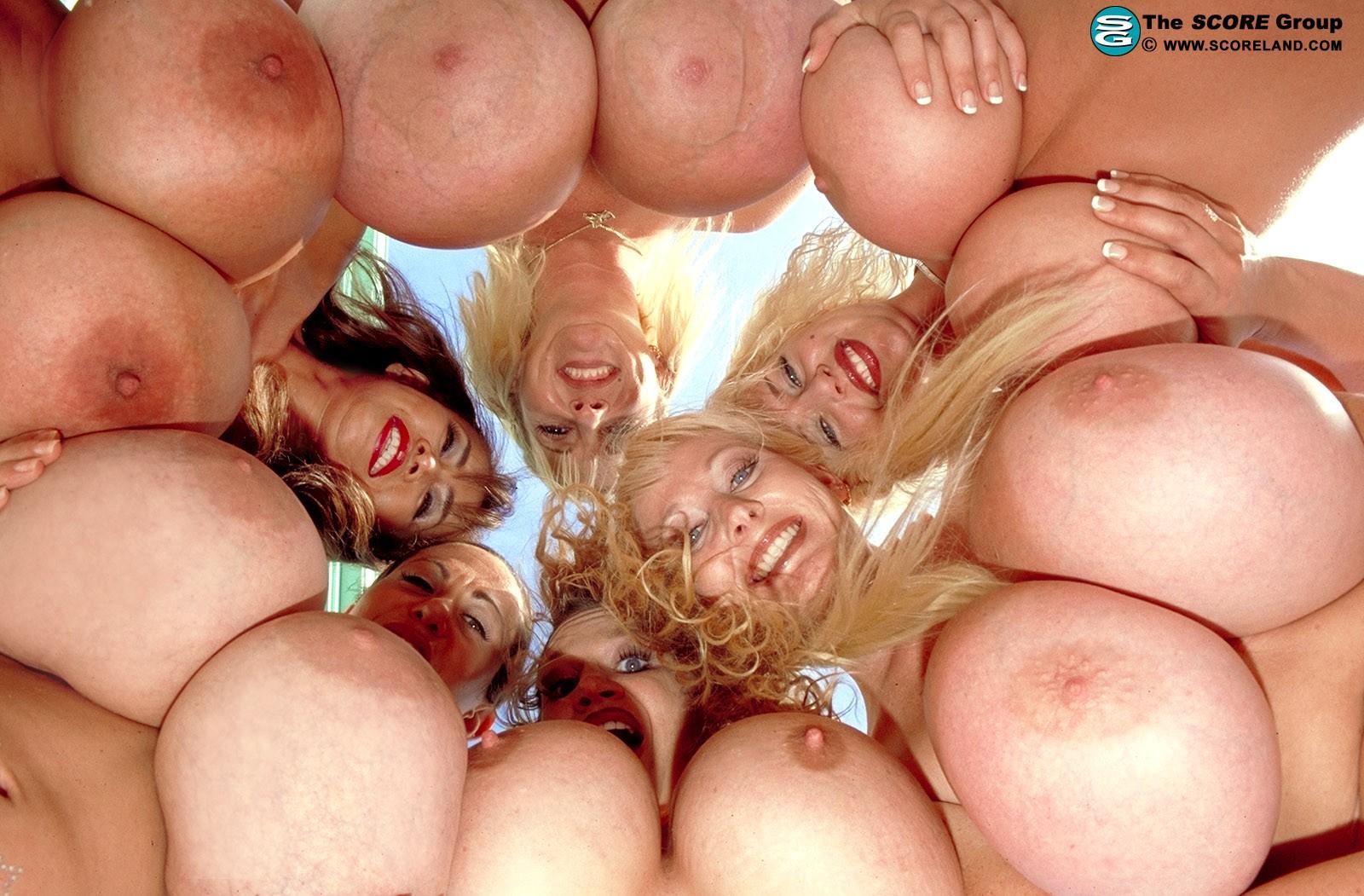 giant boobies